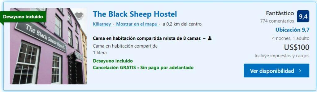 The Black Sheep Hostels Irlanda